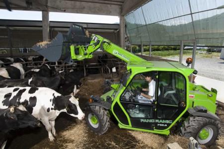 Работа на ферме. Животноводство.